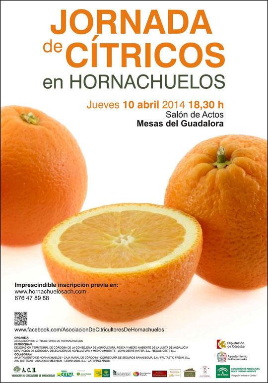 """JORNADA DE CÍTRICOS EN HORNACHUELOS (10-04-2014). - Haz """"clic"""" en la imagen para ampliar."""