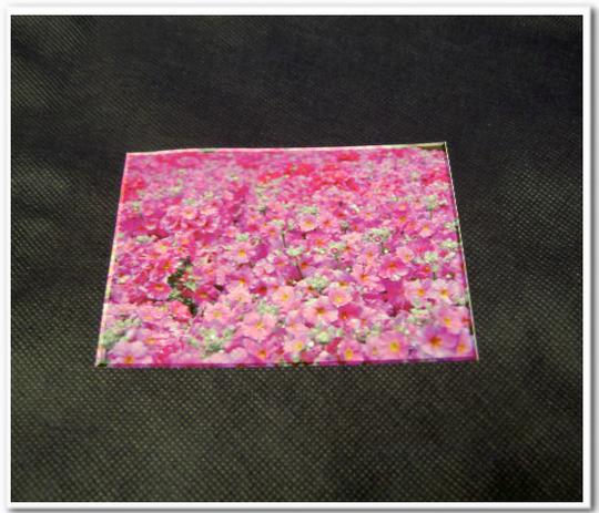 不織布バッグに写真の印刷:不織布ネイビー色に写真をインクジェット転写
