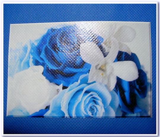 不織布バッグに写真の印刷:不織布スカイブルーに写真をインクジェット転写(接写)