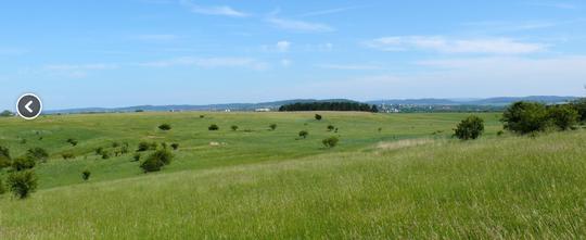 Der Osterberg - das größte zusammenhängende Gründlandgebiet im Landkreis