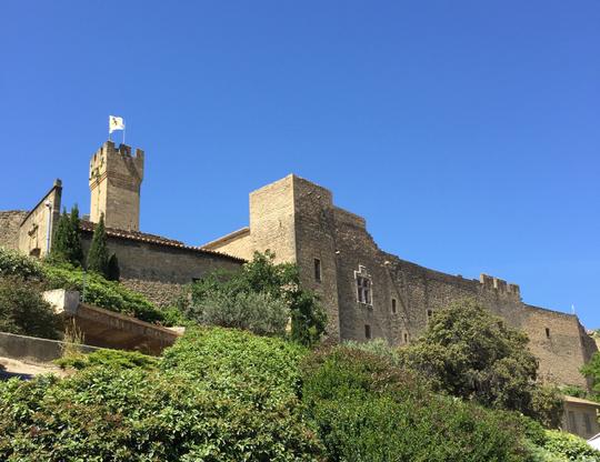 Château de l'Empéri à Salon de Provence