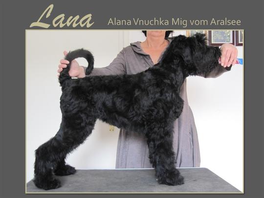 Lana mit 4 Monaten