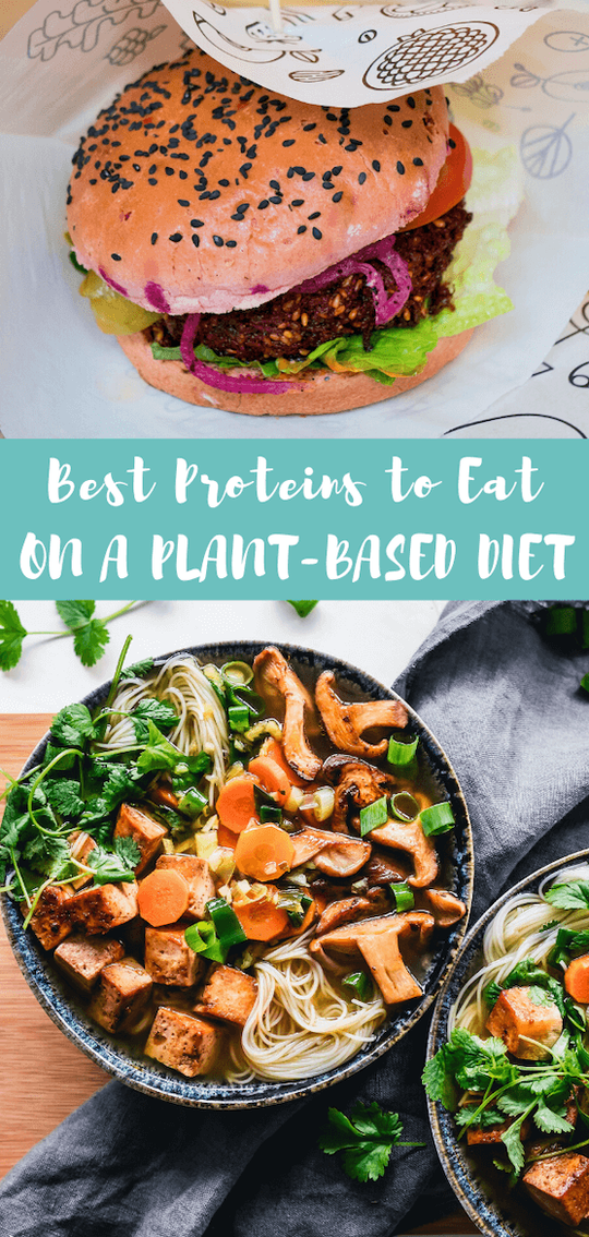 On a plant based diet? If you need a plant based for beginners w/ a list of plant protein sources and plant forward meals, look no further than this list of vegetarian dinner & vegan recipes #plantbased #plantprotein #protein #vegetarian #vegan #nutrition