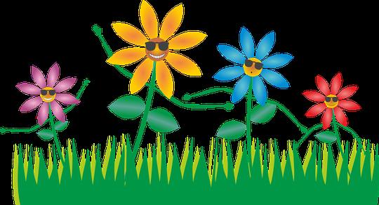 Bild: succo auf Pixabay