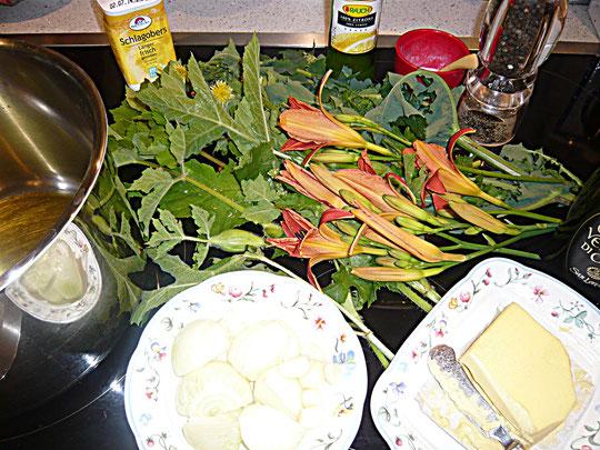 gänsedistel-, wiesenbärenklau-, taglilien-suppe