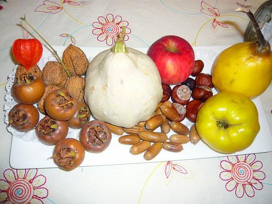 mispeln - eine schon fast vergessene wildfrucht