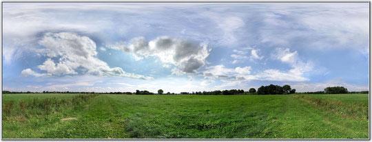Wiese bei Schiphorst