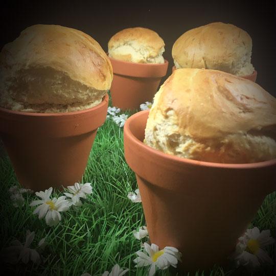 Brot aus dem Blumentopf für Ostern oder Brunch vegan mit dem Thermomix gemacht