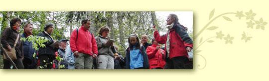 Individuelle Kräuterwanderung mit Celia Nentwig