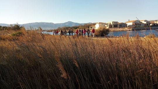 La marche de Randos Canétoises du 05 décembre 2017 à Saint Cyprien entre lagune et marina