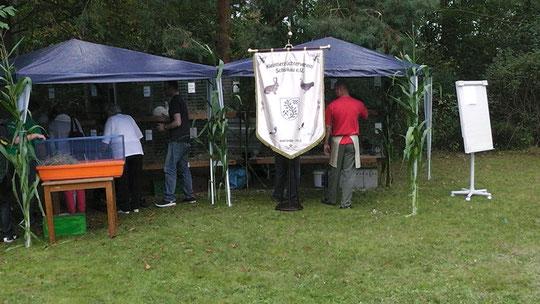 Vereinsfest Schipkau