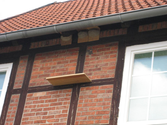 Foto: künstliche Nisthilfen für Mehlschwalben am Jugendheim in Borsum, der früheren Dorfschule (Foto Kauer)
