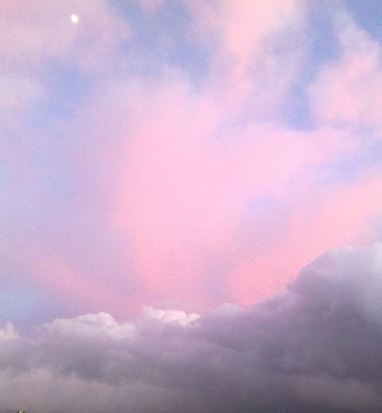 Camden pink sky, Lorraine Williams 2010