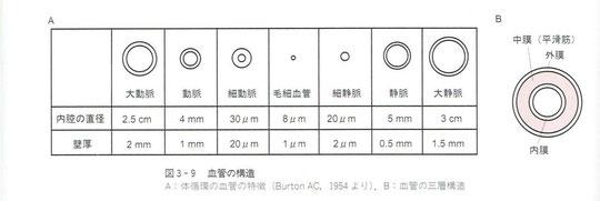 種類と内径の直径、壁厚
