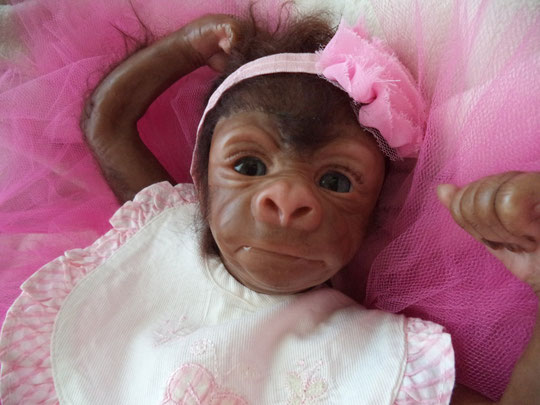 monkey reborn kiwy