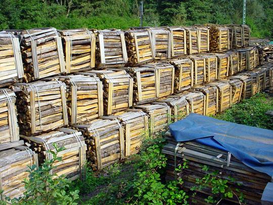 Brennholz aus Edelkastanie, gespalten, zum trocknen aufgesetzt