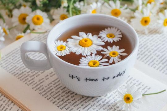 ユーカリの葉とホットコーヒーの入ったマグカップ。水色の手帳とボールペン。カラフルな付箋。