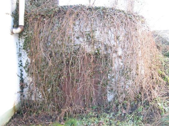 Untere Kellergasse - ehem. Wirtshaus-Keller