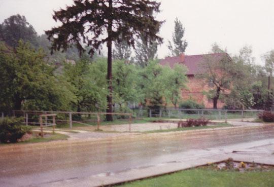 Hörersdorf 1989: Hochwasser - Die Mistel kurz vor dem Überlaufen - Foto: Erich Steingassner