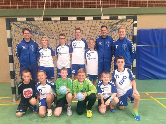 männliche D-Jugend - Saison 2015/16 - Jahrgang 2003/04