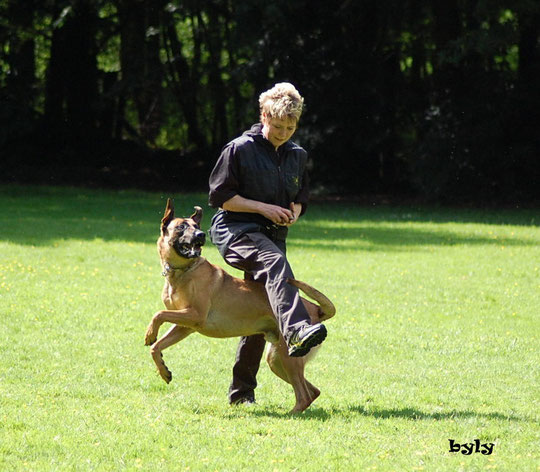 Dogdancing???