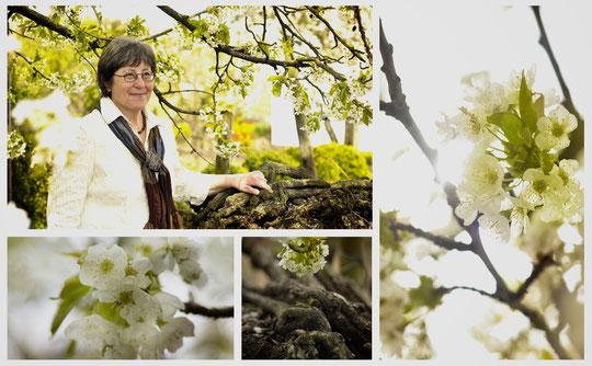 Weingut Trautwein: Margit Spaleniak, die Ruhe im Weingut und der Vinothek in Mainz