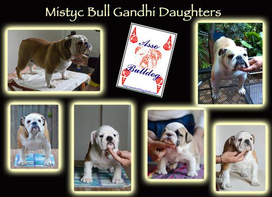 Alcune figlie del nostro stupendo Gandhi !