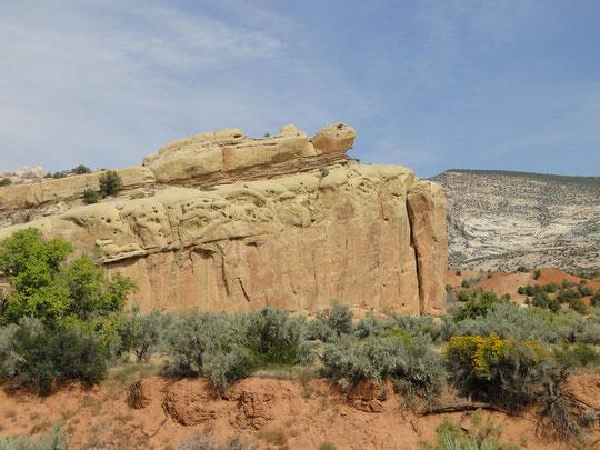 Turtle Rock (Dinosaur N.M.)
