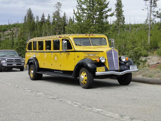 Yellowstone Park Bus (Baujahr 1936)