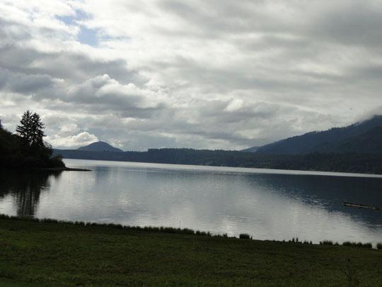 Lake Quinault (Olympic N.P.)