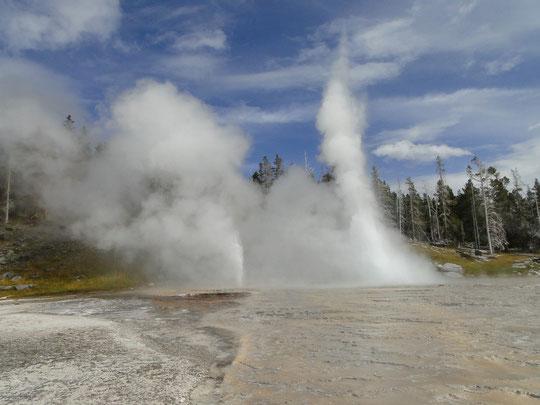 Grand Geyser (Yellowstone N.P.)