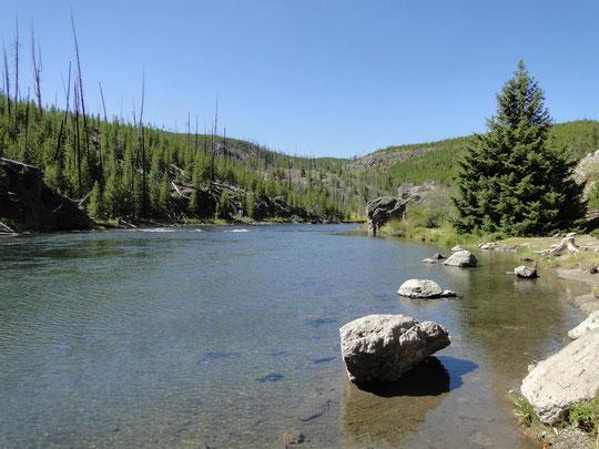 Firehole River - lädt zum Bade, brrr
