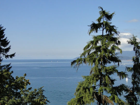 Blick vom Prospect Point im Stanley Park (Vancouver)