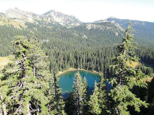 Sunrise Lake (Mount Rainier N.P.)