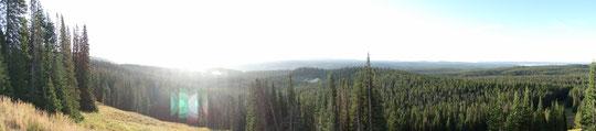unser letztes Panorama über den Yellowstone