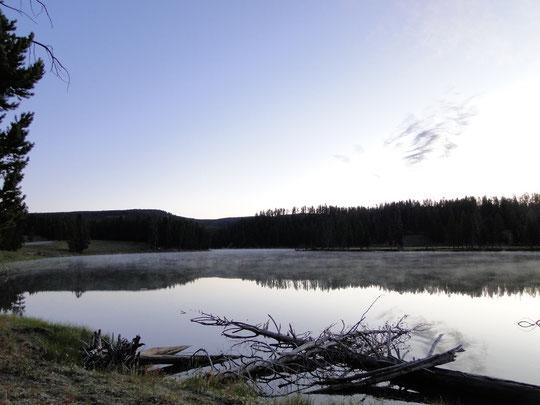 Morgens um 6.30 Uhr bei -5°  (Yellowstone N.P.)