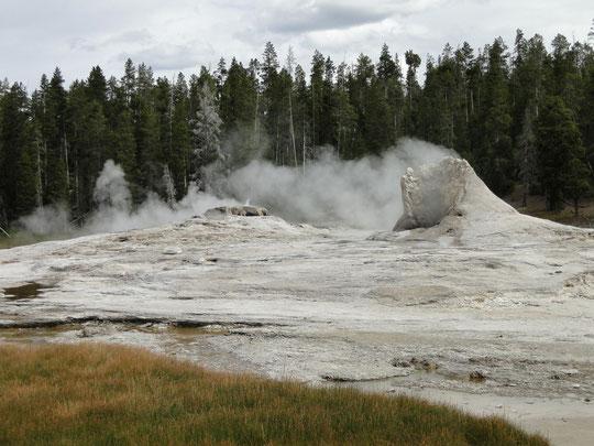 Giant Geyser (Yellowstone N.P.)