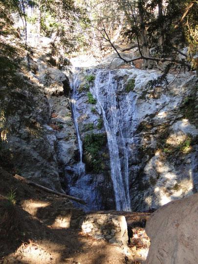 Pfeiffer Falls (Pfeiffer Trops)