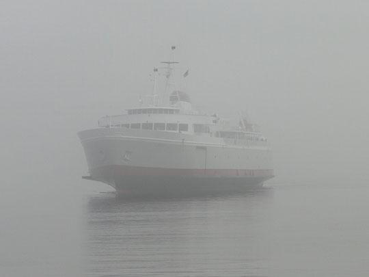 unsere Fährt - aus dem Nebel aufgetaucht