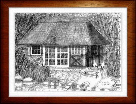 Vogelhaus im Wildpark Schwarze Berge  Bleistiftzeichnung  42 x30 cm
