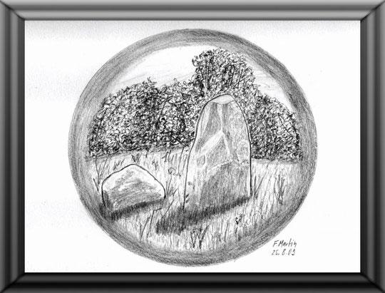 Höltigbaum 1  Bleistiftzeichnung  30 x 24 cm