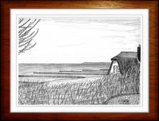 Ahrenshoop   Bleistiftzeichnung   32 x24 cm