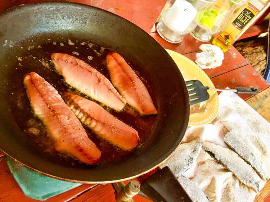 steking fisk makrell