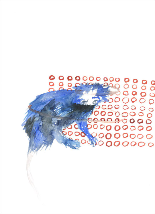 Many Blue, 2010, Aquarell auf Papier, 30 x 42 cm