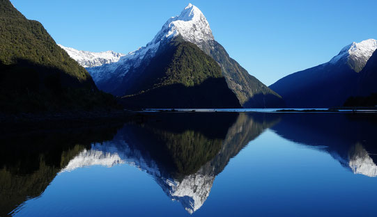 Milford Sound nahe Queenstown