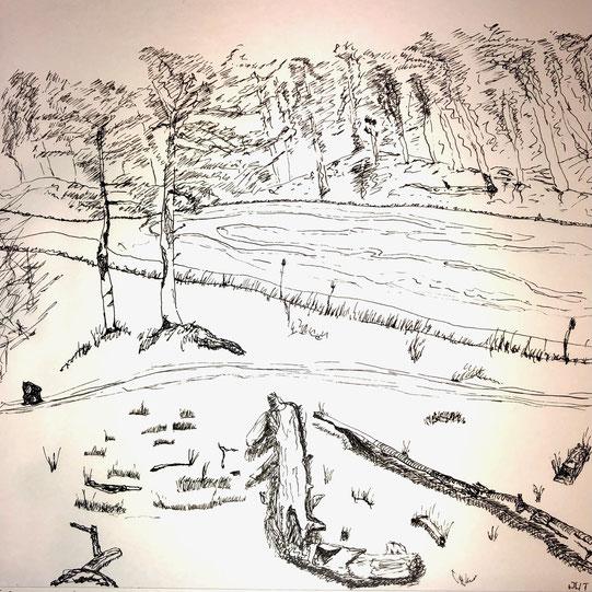 Bild des Monats Februar 2021 »Winter (Niederrhein)« von Justus, Tusche auf Papier