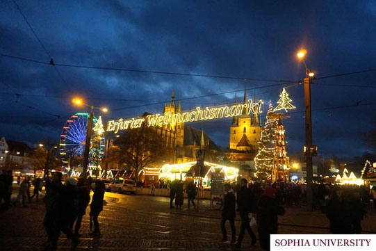 こちらも旅行で訪れたドイツ・エアフルトのクリスマスマーケットの様子。