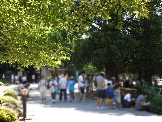 大宮公園一番のポケモンGOスポット