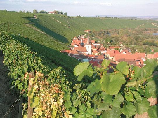 Idyllisches Weinfranken - Bild: Frankenwein