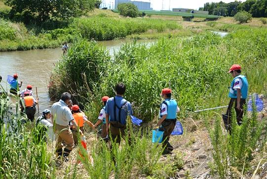 河川・魚類調査に取り組む「藤田小学校」の生徒たち